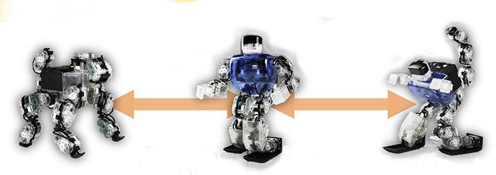 Robobuilder_modeli.jpg