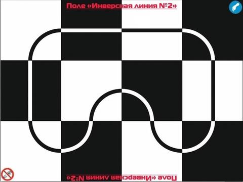 """Поле """"Инверсная линия №2"""" 3200 х2400 мм"""